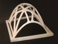 cupola nervata (1)