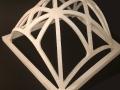 cupola nervata (2)
