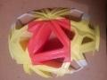 cupola nervata (7)