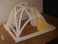cupola nervata (8)